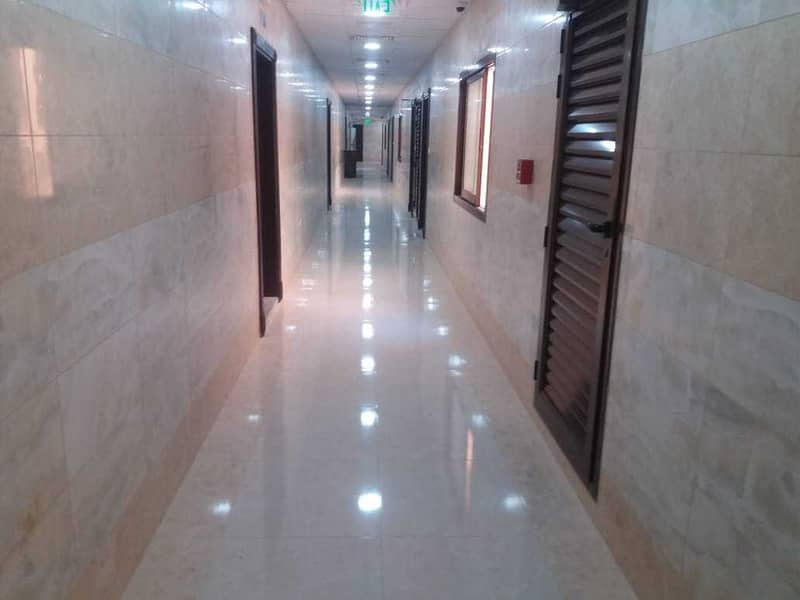 8 New Shop with Big Space  Available Near Camel Market