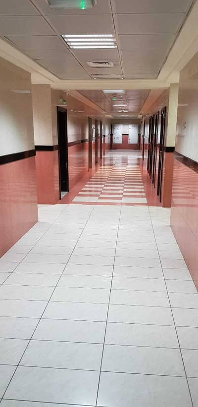 Building for Sale in Al Taawun, Sharjah - TOWER FOR SALE IN AL KHAN WITH THE BEST PRICE