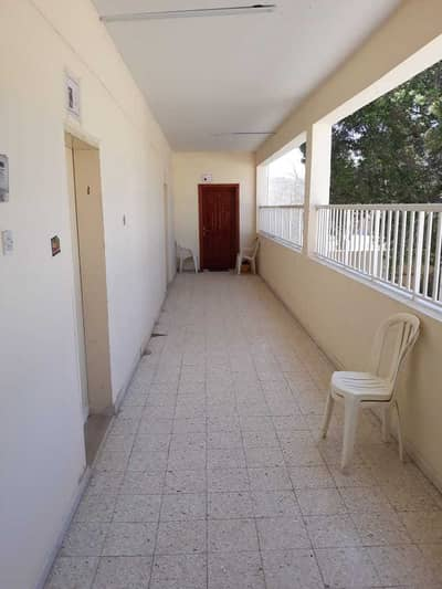 Studio for Rent in Al Rawda, Ajman - Studio for rent in 12000 yearly with no chqs no contract no fewa deposit.
