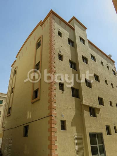 Bulk Unit for Rent in Muwaileh, Sharjah - Studio Units Available for Staff Accommodation in SHARJAH - MUWEILLAH-SHARJAH HIND 3