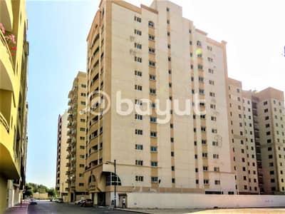 2 Bedroom Flat for Rent in Al Nahda, Dubai - Spacious 2BHK - Opposite Pond Park