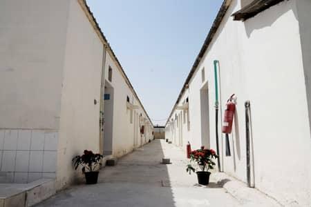 سكن عمال  للايجار في السجع، الشارقة - سكن عمال في السجع 8400 درهم - 5209320