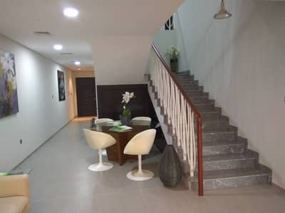 No Commission! Brand New 3 BR With High Quality Finishing Townhouse For Rent!