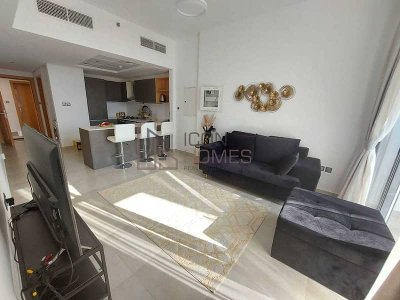 HIGH END TWO  BEDROOM  APARTMENT IN ELYSEE