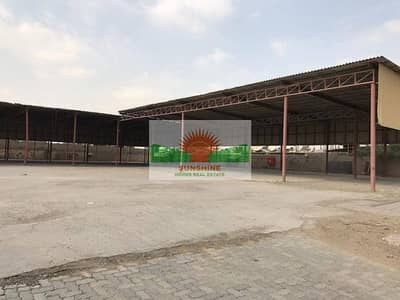 Plot for Rent in Industrial Area, Sharjah - 38000sq.ft open land -Industrial Area 10  -  AED 600,000 /yr