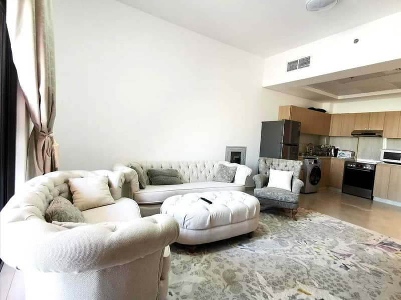 Spacious Fully Furnished One Bedroom With 2 Balconies
