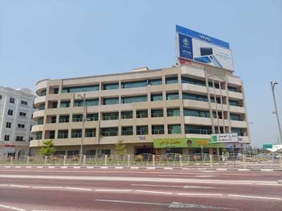 فلیٹ 3 غرف نوم للايجار في جميرا، دبي - شقة في جميرا 1 جميرا 3 غرف 80000 درهم - 5340723
