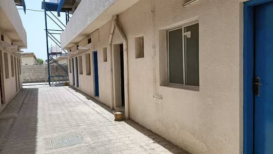 Labour Camp for Rent in Al Jurf, Ajman - 36 Labor rooms AED 1100/ month including FEWA in jurf