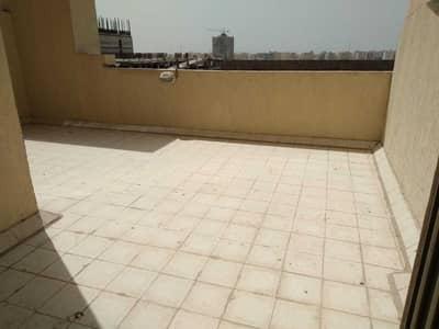 1 Bedroom Flat for Rent in Emirates City, Ajman - Terrace