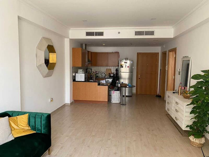 Very Spacious Fully Furnished One Bedroom With Balcony