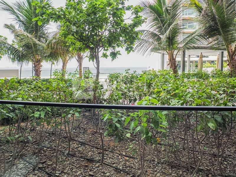 11 Direct Access to Pool I Sea View I Balcony