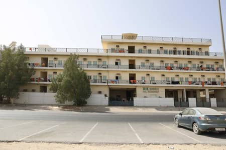 Labour Camp for Rent in Muhaisnah, Dubai - Full Labor Camp | Well-Maintained | Exclusive