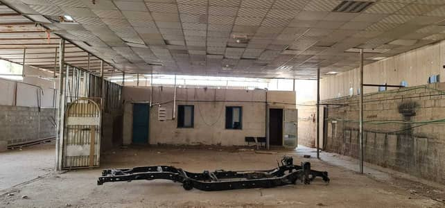 Industrial Land for Rent in Industrial Area, Sharjah - 5000 sq ft Shed with Open Area TOLET in Industrial area 6.