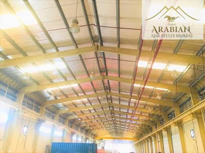 Warehouse for Rent in Dubai Industrial Park, Dubai - Huge yard with shed | Brand new |Ideal for Manufacturing|
