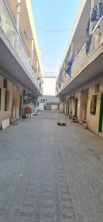 Labour Camp for Rent in Industrial Area, Sharjah - 20 to 50 Rooms Labor Camp available in Industrial area 10, Sharjah