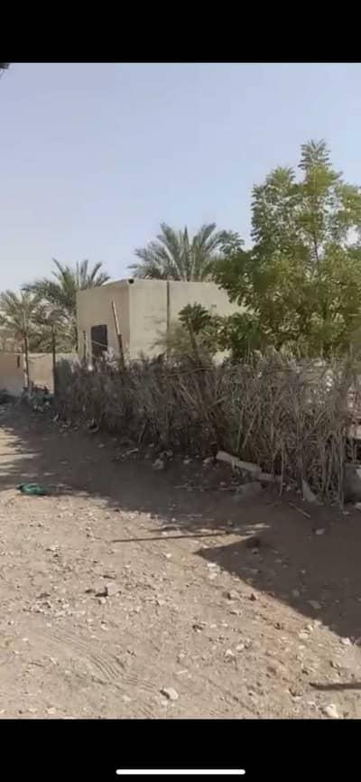 1 Bedroom Mixed Use Land for Sale in Mudfak, Ras Al Khaimah - Beautiful Farm