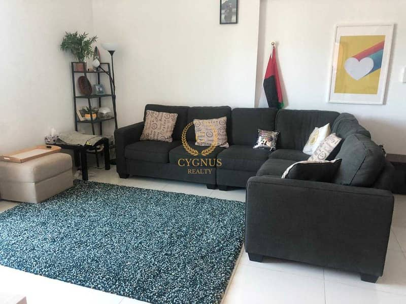 SPACIOUS 2 BEDROOM   FULLY FURNISHED  BEST OFFER