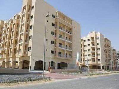 2 Bedroom Flat for Rent in Liwan, Dubai - Cheap offer ready to move in two bedroom with three bathroom for rent
