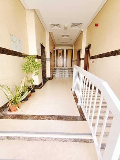 1 Bedroom Flat for Rent in Muwailih Commercial, Sharjah - Brand New 1-Bhk Free High Maintenance Full Family Building Muwaileh