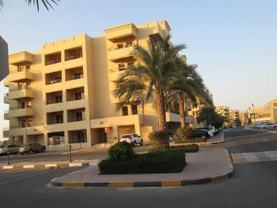 Shop for Rent in Al Hamra Village, Ras Al Khaimah - Exclusive Commercial Place Behind Al Hamra Mall