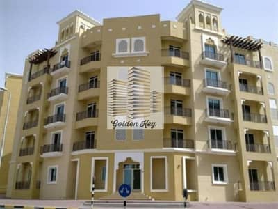 Huge 1 Bedroom Apartment (BHK) In Emirates Cluster For Sale