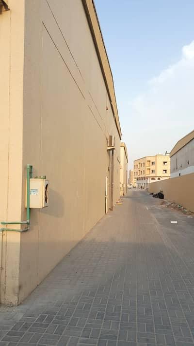 Warehouse for Rent in Al Jurf, Ajman - Spacious 2016 SqFt Warehouse in Jurf-Ajman