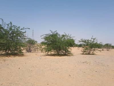 Plot for Sale in Sharjah Investment Center, Sharjah - Land/Plot for Sale in FREE ZONE, SHARJAH | 750K