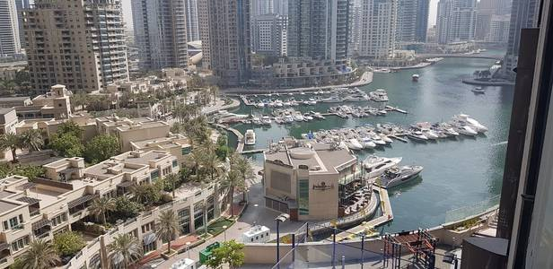 2 Bedroom Flat for Sale in Dubai Marina, Dubai - Price to Sell 2BR in Marina Gate2 with Marina View