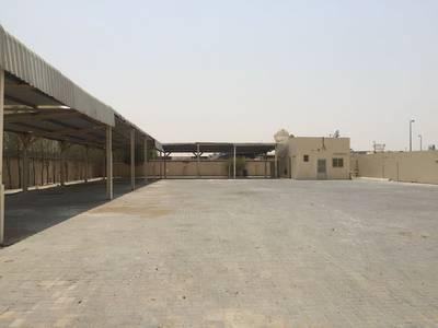 Other Commercial  للايجار في مدينة الإمارات الصناعية، الشارقة - للايجار حوطه في الصجعه الحنو بلوك 7