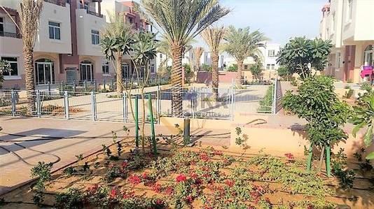 1 Bedroom Flat for Sale in Al Ghadeer, Abu Dhabi - Terraced|1 BR Apt for Sale|Negotiable |
