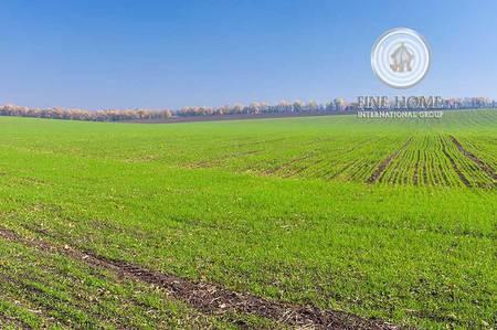 Plot for Sale in Al Dhahir, Al Ain - Great Farm in Al Dhahir  Al Dhira