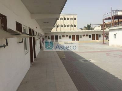 Labour Camp for Sale in Muhaisnah, Dubai - Newly Renovated 83 Rooms Labor Camp  available for SALE