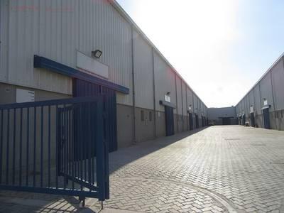 Warehouse for Sale in Dubai Investment Park (DIP), Dubai - Brand New   10 Warehouses   DIP Phase 1