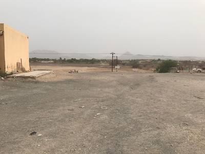Plot for Sale in Masfoot, Ajman - Hatta facilities (40) months owned land Ksnip Masfoot tourism basin (3)
