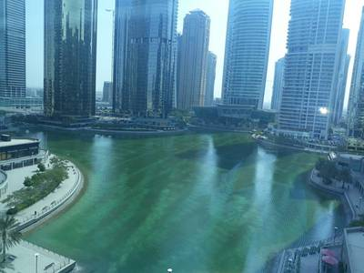 Office for Rent in Jumeirah Lake Towers (JLT), Dubai - Spacious Fitted Office in Indigo Icon JLT!!!