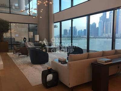Double Height Living Area Dorchestor Palm