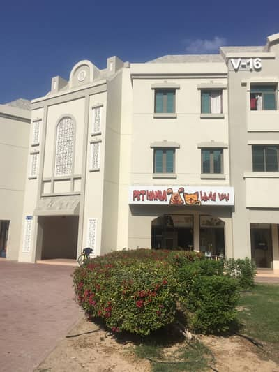 1 Bedroom Flat for Sale in International City, Dubai - Best Deal 1 BHK in V-16 Russia Cluster