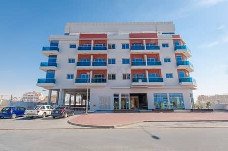 2 Bedroom Flat for Rent in Al Warsan, Dubai - 962 Sq. Ft. 2 B/R with  Balcony | Huge Closed Kitchen |  International City Phase 2