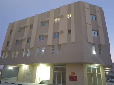 1 Bedroom Apartment for Rent in Al Hamidiyah, Ajman - NO COMMISSION Brand new 1 Bed Local Owner with Parking for Rent