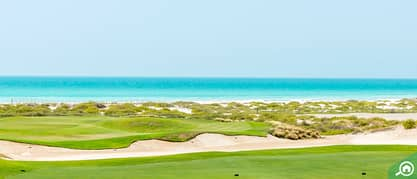Find out more about Saadiyat Island