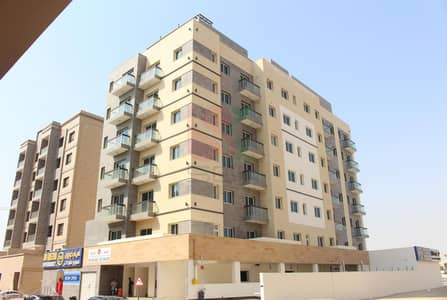 2 Bedroom Flat for Rent in Al Warqaa, Dubai - Spacious 2BR with Maidroom in Al Warqa