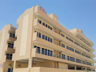 Labour Camp for Sale in Jebel Ali, Dubai - New G + 4 Labor Camp | 192 Rooms | 720 People|