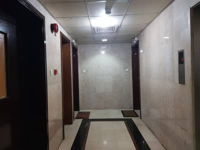 2 Bedroom Flat for Rent in Al Salam Street, Abu Dhabi - VERY SPACIOUS 2 BEDROOM 2 BATHROOM BIG KITCHEN AND BALCONY FOR ONLY 60,000 NEAR FATIMA SCHL