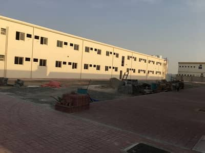 Showroom for Sale in Al Jurf, Ajman - 186 labour room 9 show rooms 19 flats for sale expected rent 4 million