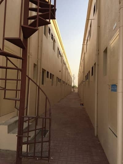 12 Bedroom Labour Camp for Rent in Al Jurf, Ajman - Labour Camp 70 Rooms Available for Rent in Al Jurf Near to China Mall Excluding 900 Call Rawal