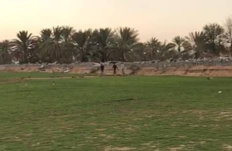 Plot for Sale in Al Yasmeen, Ajman - Own a residential plots in Ajman 15 mins from Dubai and free hold all nationalities