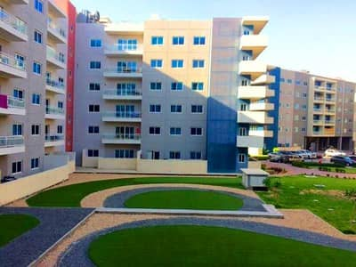 1 Bedroom Flat for Rent in Al Reef, Abu Dhabi - Beautiful 1 BR I Basement Parking I Multiple Cheque !!