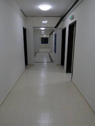 2 Bedroom Flat for Rent in Al Nahda, Sharjah - Wow Deal!! Brand New Building 2 bhk in 35k Central A/C opp. to sahara center in al nahda