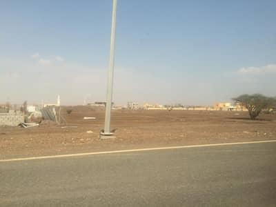 Plot for Sale in Al Manama, Ajman - residential plot for sale in al manama