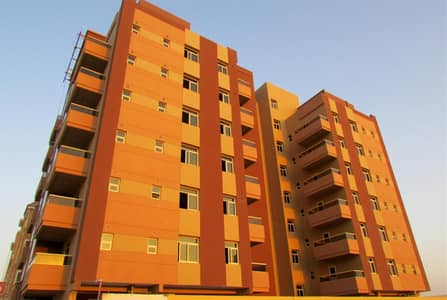 2 Bedroom Flat for Rent in Al Warqaa, Dubai - Spacious two bed room available behind the Sheikh rashid mosque.